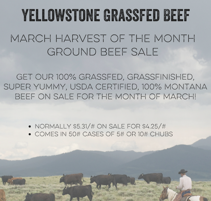 Celebrating the March Harvest of the Month with Yellowstone Grassfed Beef